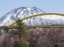 Niseko-Spring